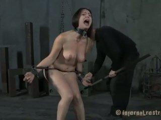 muschi folter porno